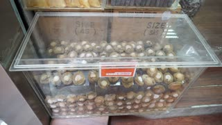 Chinese Dried seafood shop in Hong Kong. Medicine food for health