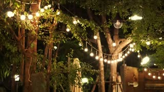 festival decorative light night party in the garden