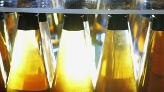 Fresh apple cider in bottle package with lighting showing clear gold transparent alcohol