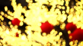 Golden New year lighting on tree branch with red lantern festival