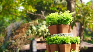 green plant pot tier set up for wedding ceremony in romantic garden