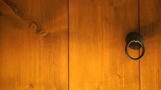 Japanese style wood door close up texture