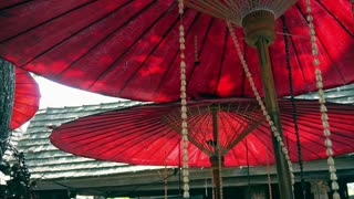Oriental red umbrella with green leaves and sunshine. Travel to Asia abstract background