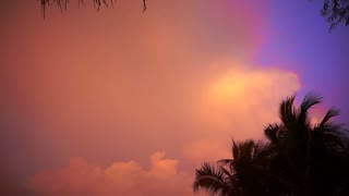 Palm tree silhouette at sunset on tropical beach Koh Payam, Thailand. Pastel colorful cloud background for copy space