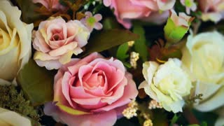 pink and white Rose flower backgrounds for valentines and wedding video