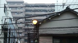 Rainy in Tokyo, transit season typhoon from Summer to Autumn. Regular street view in Japan