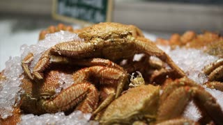 Shanghai Hairy crab and other kind iced for sell in fish market