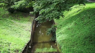 Small water duct canal through green lush park, lawn and tree