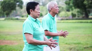 Video of Asian Senior Elderly couple Practice Taichi, Qi Gong exercise outdoor