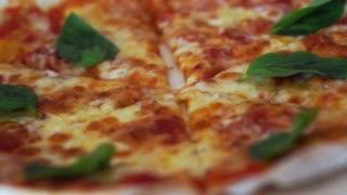 Video of Pan camera between two margarita pizzas