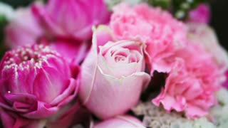 Video of Pink roses and lotuses flower bouquet valentine day background