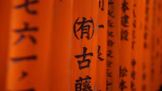 Video of Red gate torii at Fushimi Inari temple shrine in Kyoto, Japan
