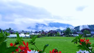 Video of small houses village in Switzerland with red flower foreground and mountain background