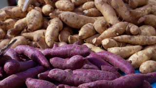 Video purple and yellow yams pile in market