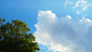 Bright blue summer sky and cloud with tree at corner slow motion