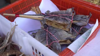 Dried Gecko Chinese medicine selling