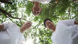 Low angle point of view Asian family play with kid or pet, tree background POV 4k
