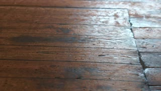 Old beautiful wood floor in Europe house texture motion video