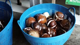 Peeled young coconut process before making coconut milk in tropical country
