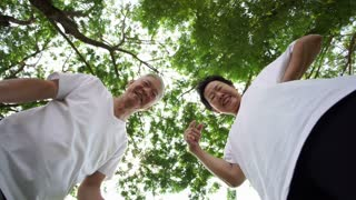 Senior grandparents play with kid or pet with lower angle point of view POV tree background 4k