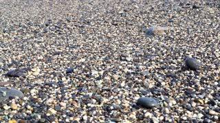 Wave runs on pebble beach sea shore of Haulien,Taiwan