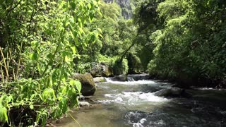 Cloudforest river, in the Andes, Ecuador.