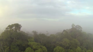 Decending into the misty rainforest canopy at dawn in Ecuador