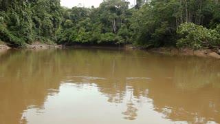 Drifting down an Amazonian river in Ecuador