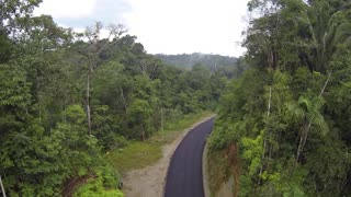 Flying over a road running through primary tropical rainforest