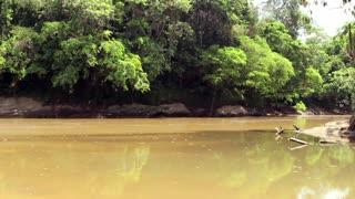 Rio Cononaco, deep in the rainforest in Ecuador