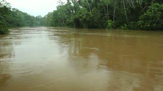 Rio Tiputini running through pristine rainforest in Ecuador
