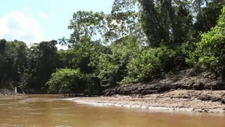 Traveling up Rio Shiripuno in a motorized canoe deep in the rainforest, Ecuad