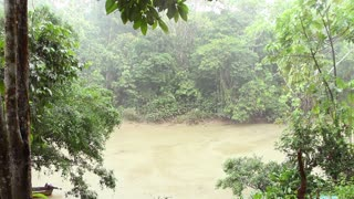 Tropical rainstorm over a rainforest creek in the Ecuadorian Amazon