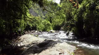 Walking up a river in cloudforest, in the Andes, Ecuador
