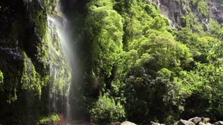 Waterfall in a cloudforest river valley, in the Andes, Ecuador.