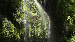 Waterfall in a cloudforest river valley