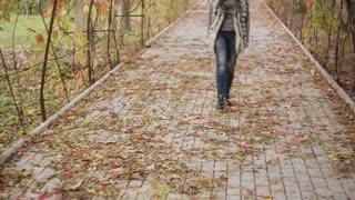 beautiful brunette girl walks in autumn park