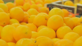 The girl in a supermarket selects the fruit. Woman choosing orange at fruit vegetable supermarket