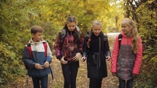 children stroll in the autumn park. School children go home from school