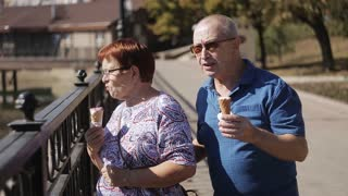Elderly married couple walking along the promenade with ice cream and talk