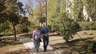 old age, retirement and people concept - happy senior couple walking at summer city park