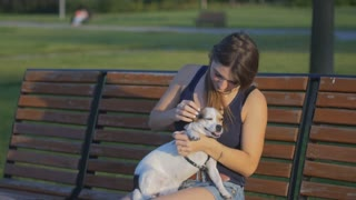 The attractive young girl sitting on a bench with the dog in the park