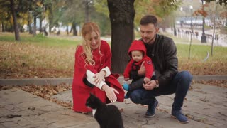 the baby first saw a black cat. Young happy family in autumn park