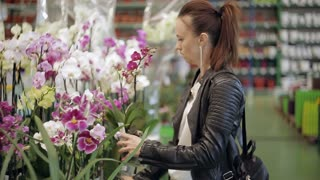 The woman in the supermarket, in the Department of garden and house plants choose indoor flower pot