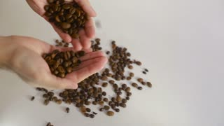Adult man hands holding coffee grains - Inside close up of adult man hands holding coffee grains in warm light on a jute canvas