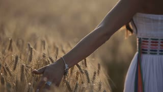 Closeup of hand touching stalks of wild grass.Young woman in white sun dress walking through grassy field at sunset.Slow motion