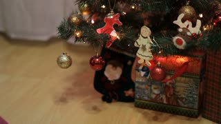 Decorated Christmas tree with gifts. Placing a Gift under the Christmas tree
