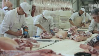 Food processing plant, pig meat. Workers cut meat.Group of butchers working in a fresh meat processing factory