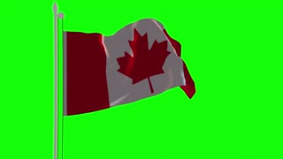 4K Canada Flag is Fluttering on green background. Isolated waving. Green screen.