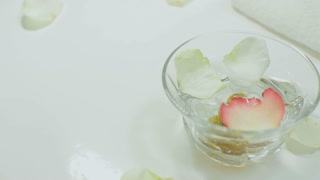 Spa Procedure. Woman In Beauty Salon Holding Fingers In Aroma Bath For Hands. Closeup Of Female Nails Soaking In Bowl Of Water With Floating Pink Flower Petals. Skin Care. High Resolution